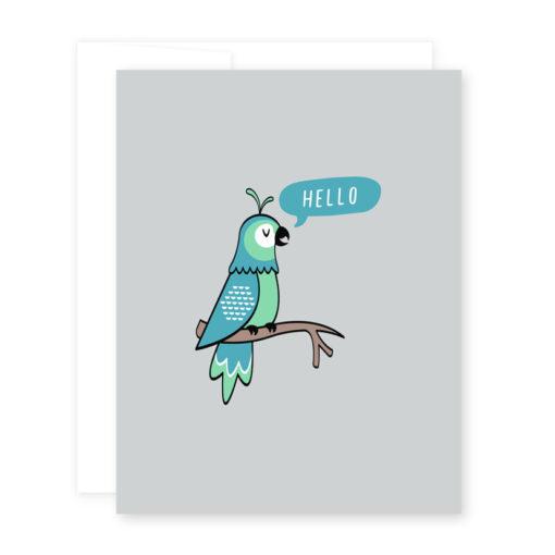 hello_parrot
